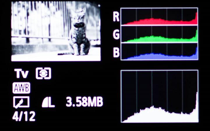 学习看直方图助你判断准确的曝光3