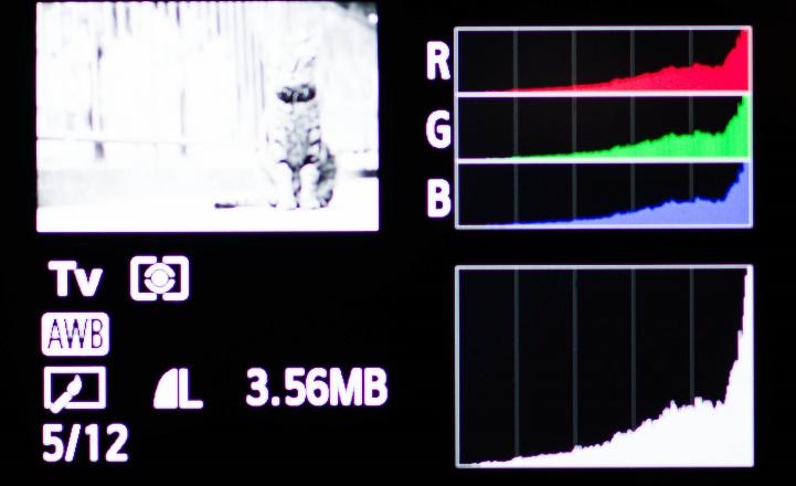 学习看直方图助你判断准确的曝光5