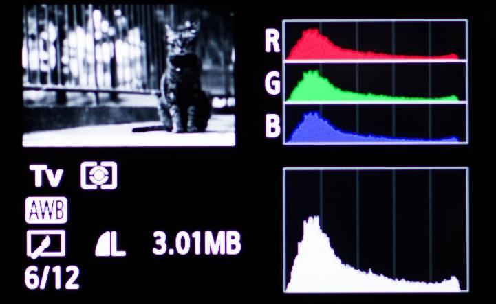 学习看直方图助你判断准确的曝光7